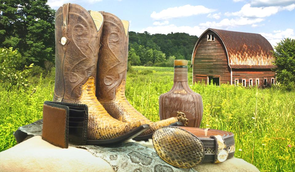 cartera de piel, botas vaqueras de piel exótica, cinturón de piel, en el fondo un granero