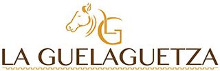 la guelaguetza zapatería y articulos de piel logo